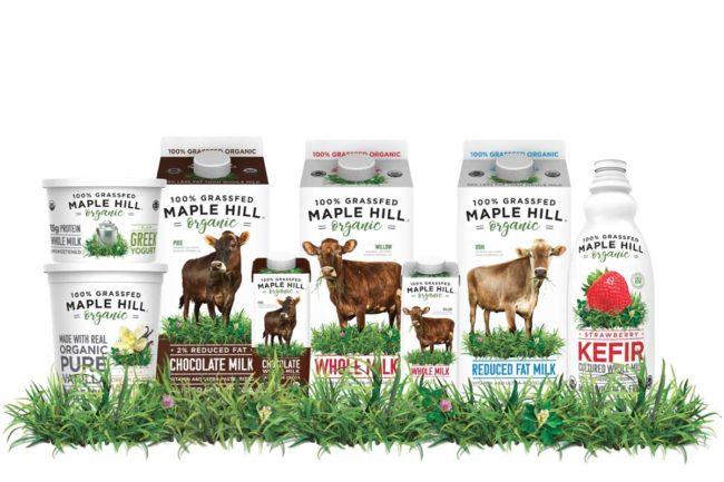 Maple Hill, Chocolate Milk