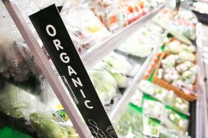 Organicgrocerysection lead1