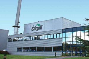 Cargillfacility lead